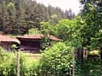 Вид возле дома. С.Стара Река, Болгария.